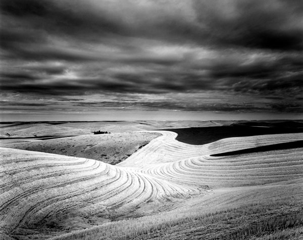 Wheatcountry